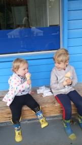 ice-cream-in-shelton